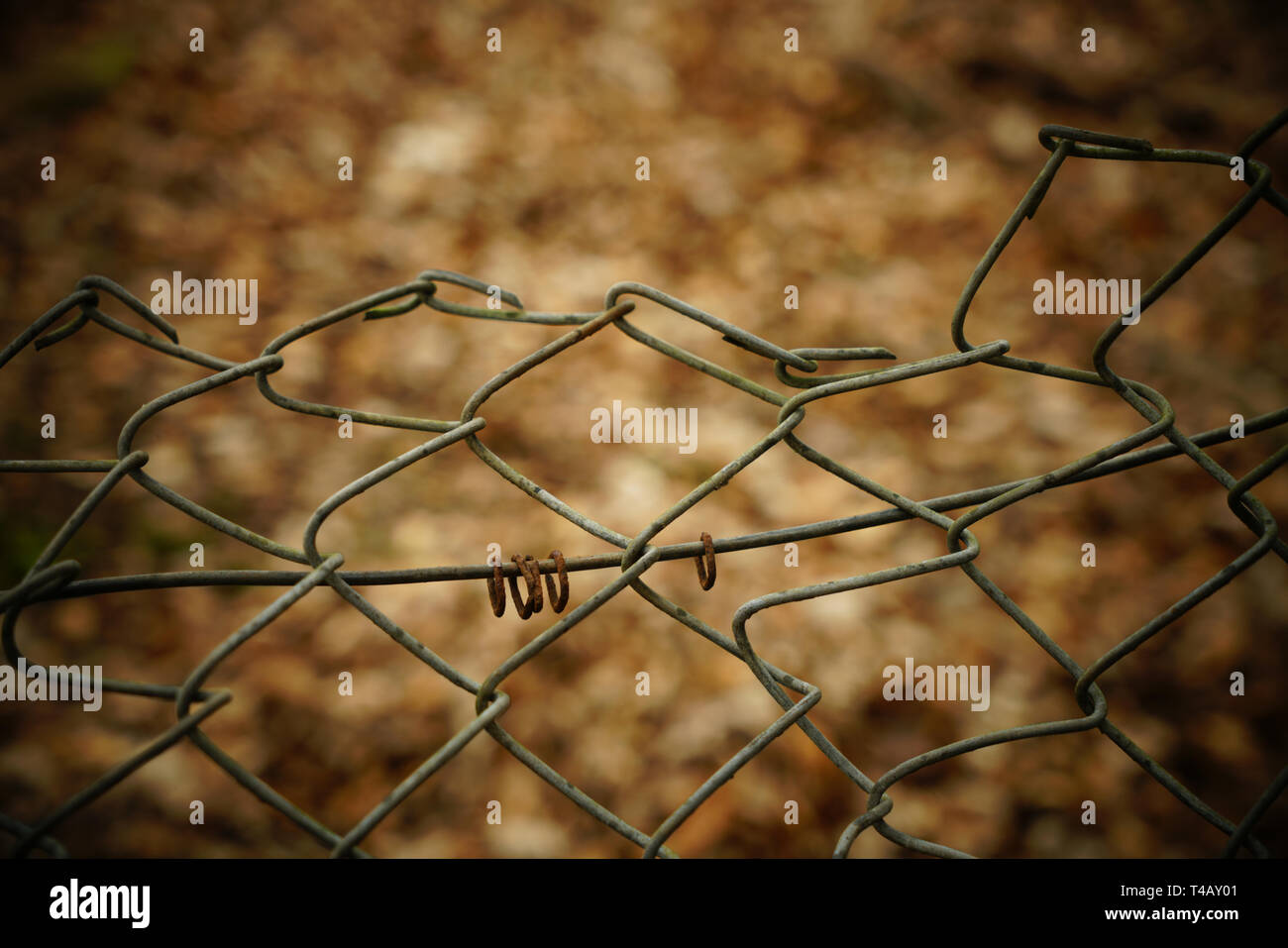 Wire fence with blurred background. - Stock Image