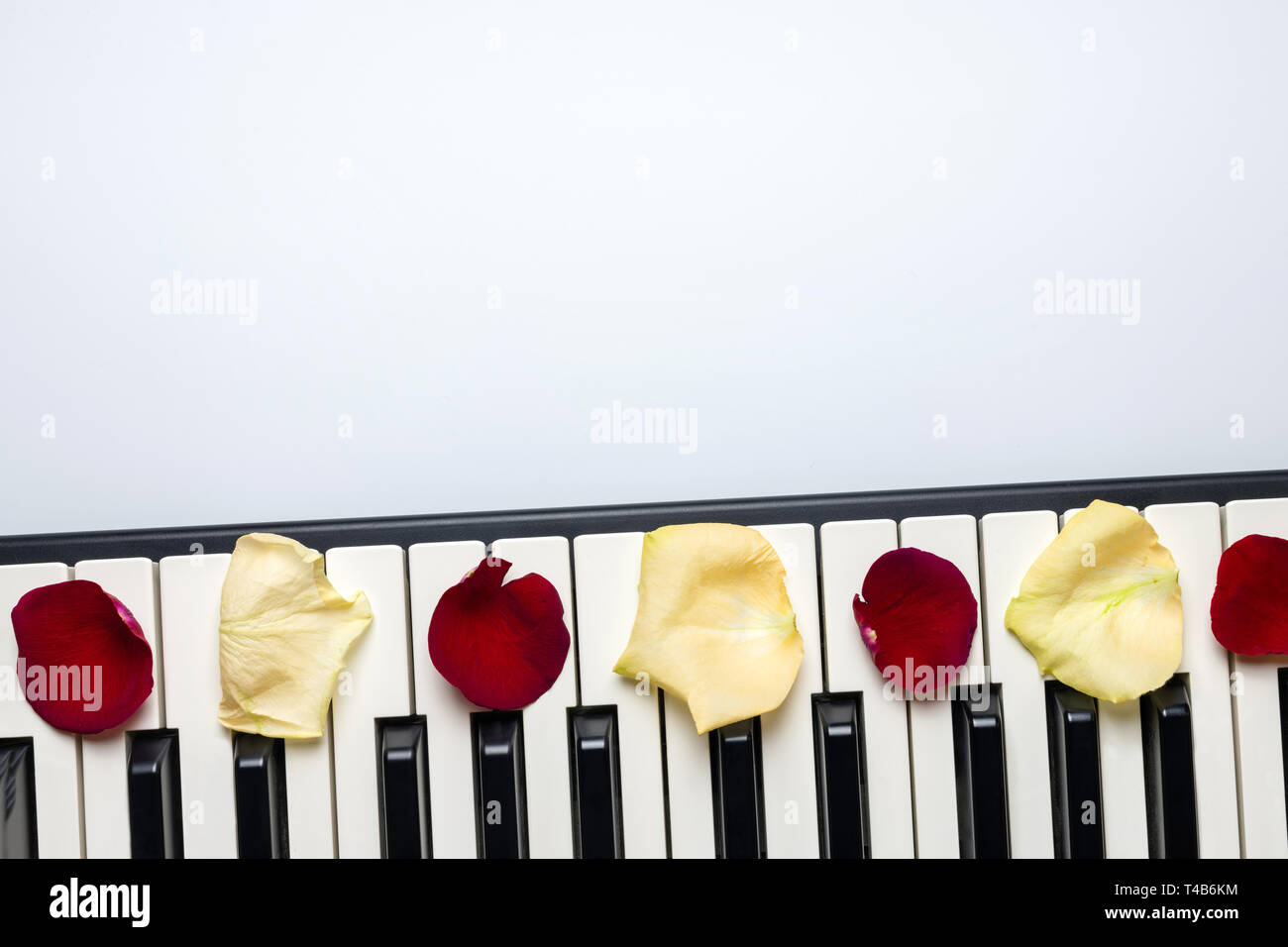 Piano keys with red and white rose flower petals, isolated, top view, copy space. Romantic concept. Piano or synthesizer keyboard. Classical music ins Stock Photo