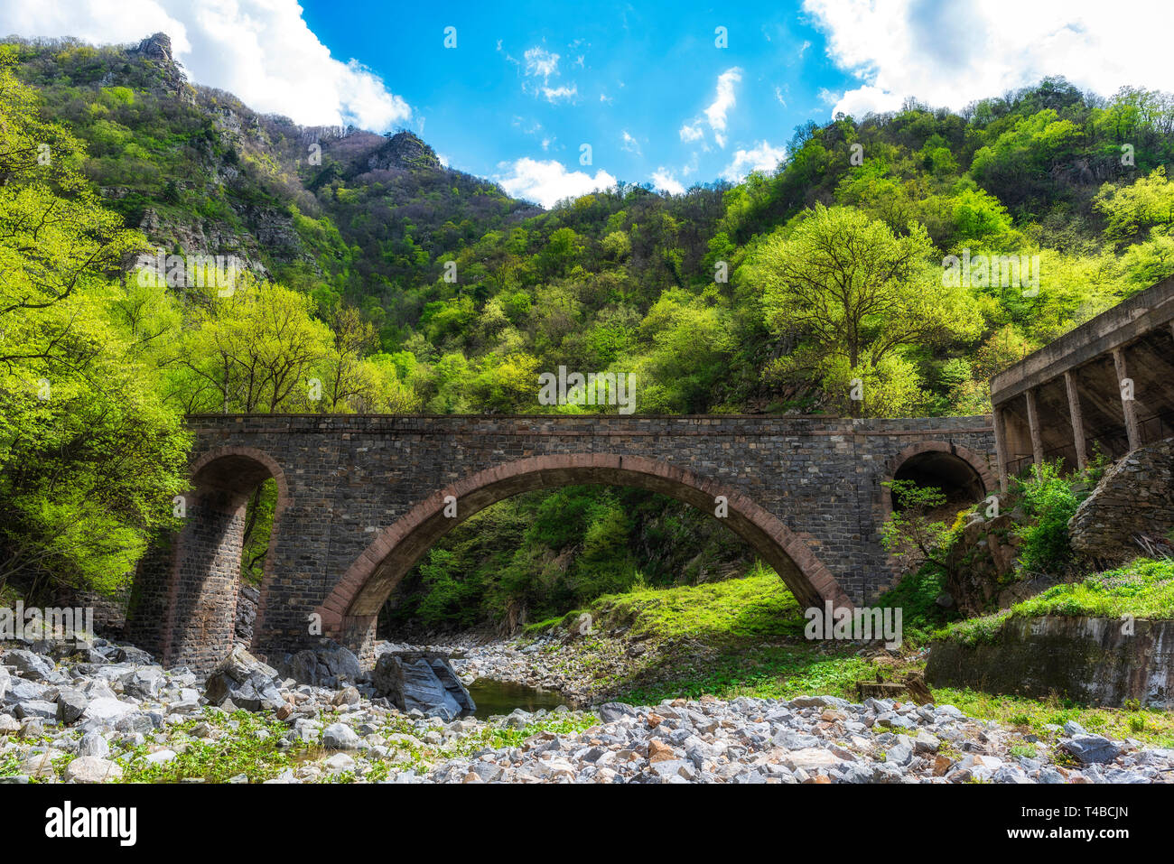 Stone bridge over small mountain river, green forest in background Stock Photo