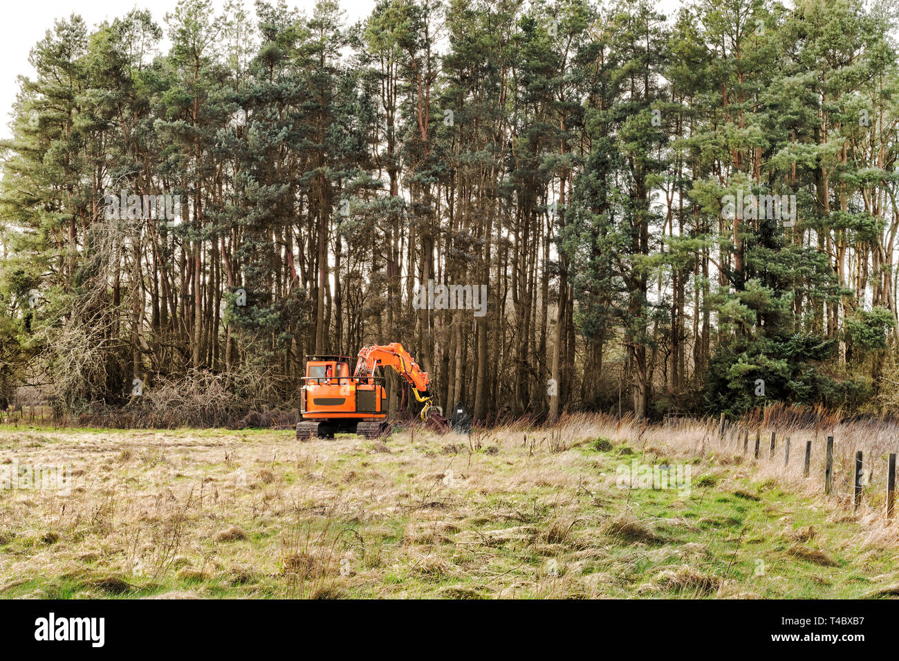 Harvester car doing forestry work at Loch Leven, Scotland - Stock Image