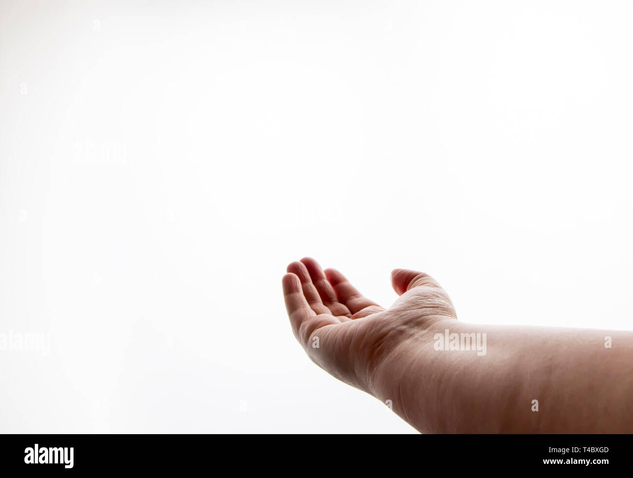 one hand reaching out with the palm facing upwards, set against a white background - Stock Image