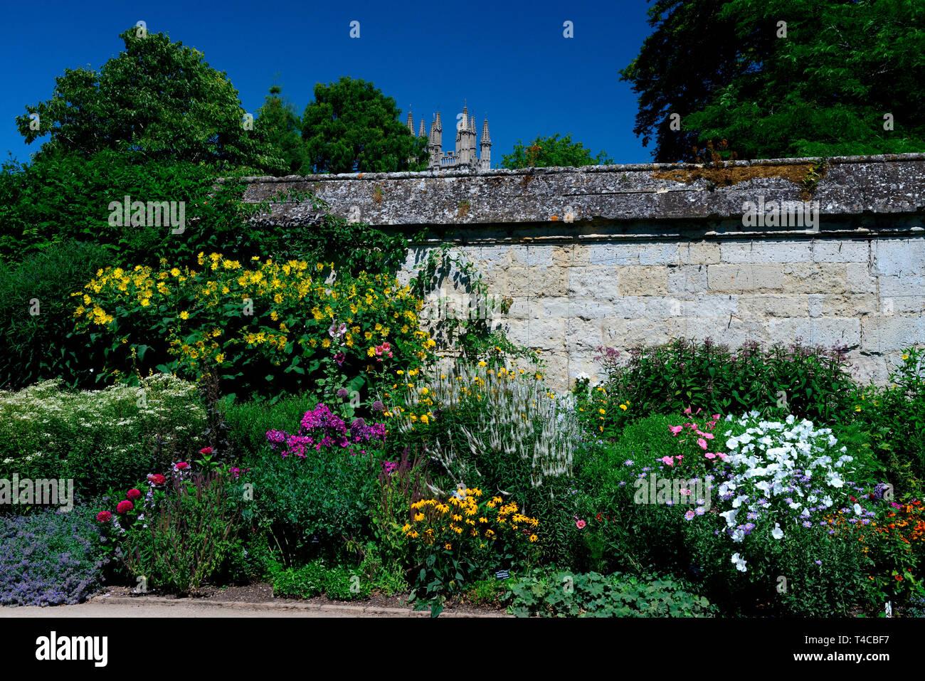 Botanischer Garten, Oxford, Oxfordshire, England, Grossbritannien - Stock Image