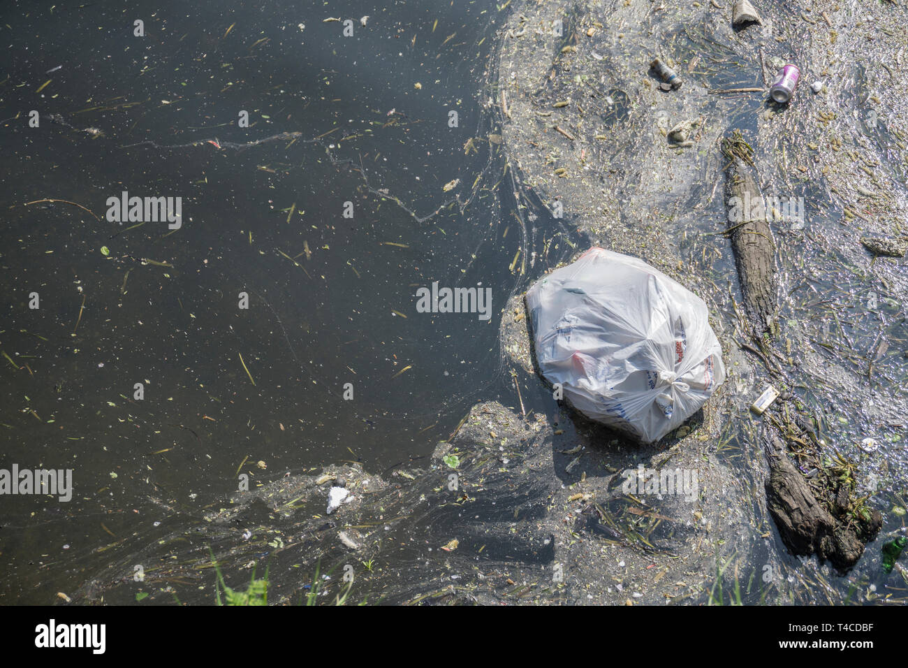 Plastic waste polluting into nature. rubbish bag floating on water - Stock Image
