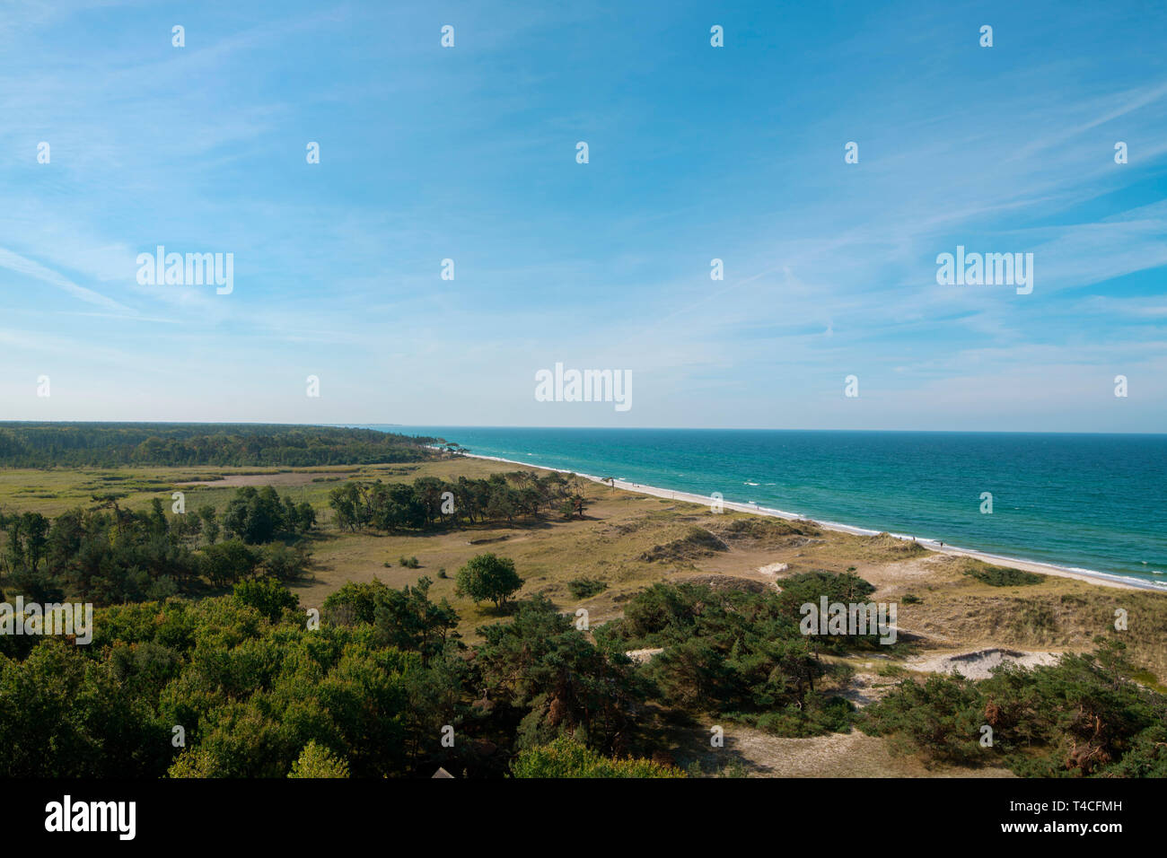 view from lighthouse Darsser Ort, Western Pomerania Lagoon Area National Park, Fischland-Darss-Zingst, Mecklenburg-Western Pomerania, Germany, Europe Stock Photo