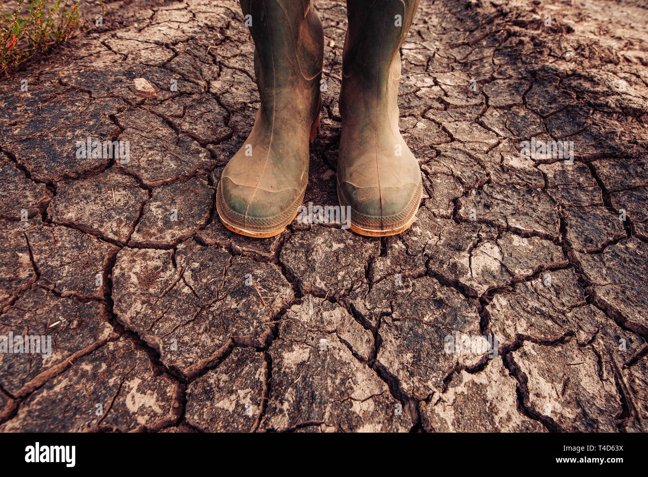 Farmer in rubber boots standing on dry soil ground, global warming and climate change is impacting crops growing and yield Stock Photo