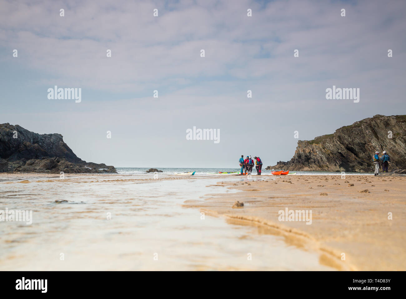 Landscape shot of group of adults preparing their kayaks on the beach off the Welsh coastline, Anglesey. - Stock Image