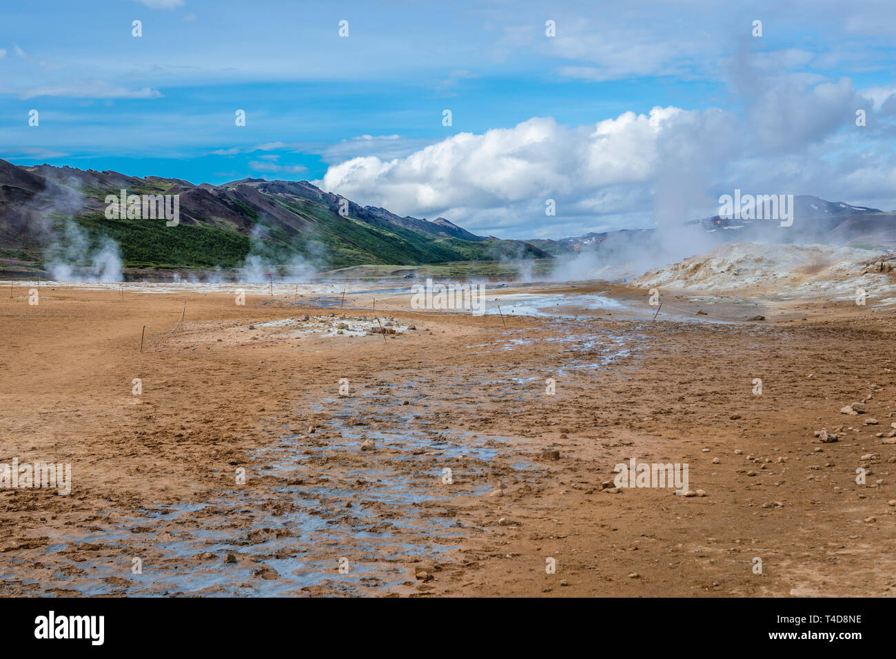 Hot springs in Namaskard geothermal area also called Hverarond near Reykjahlid, Iceland, view with Namafjall mount Stock Photo