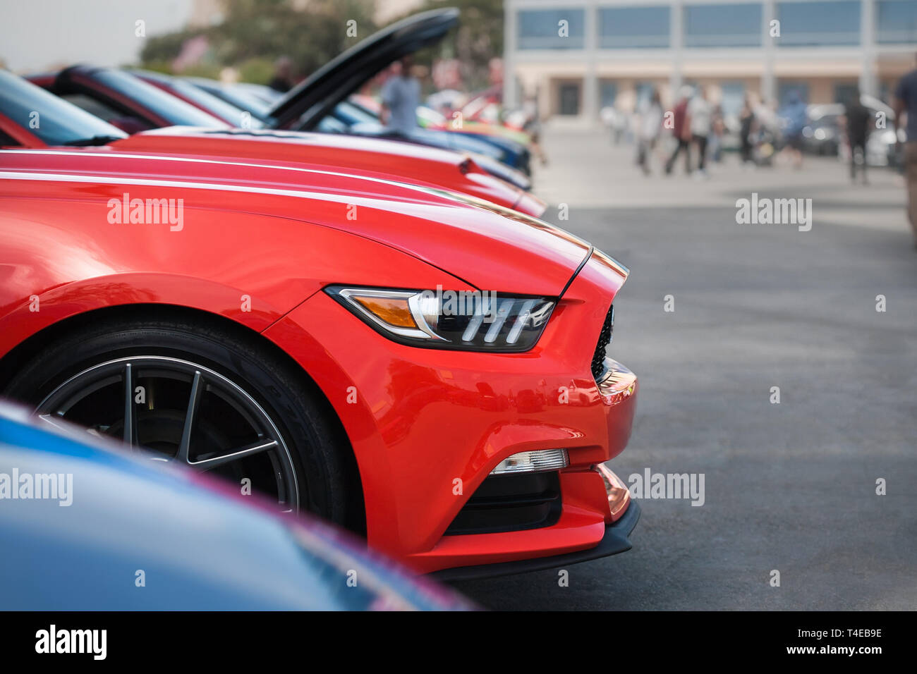 Side view of a ford mustang show car from the 2019 fabulous fords forever auto show in Anaheim California. Stock Photo