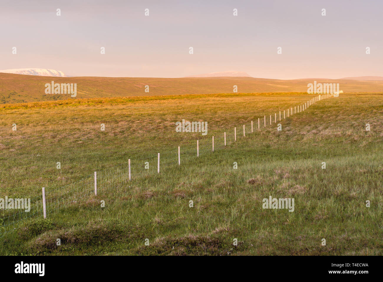 Aerial view on grazing land near Laugar town in Iceland - Stock Image