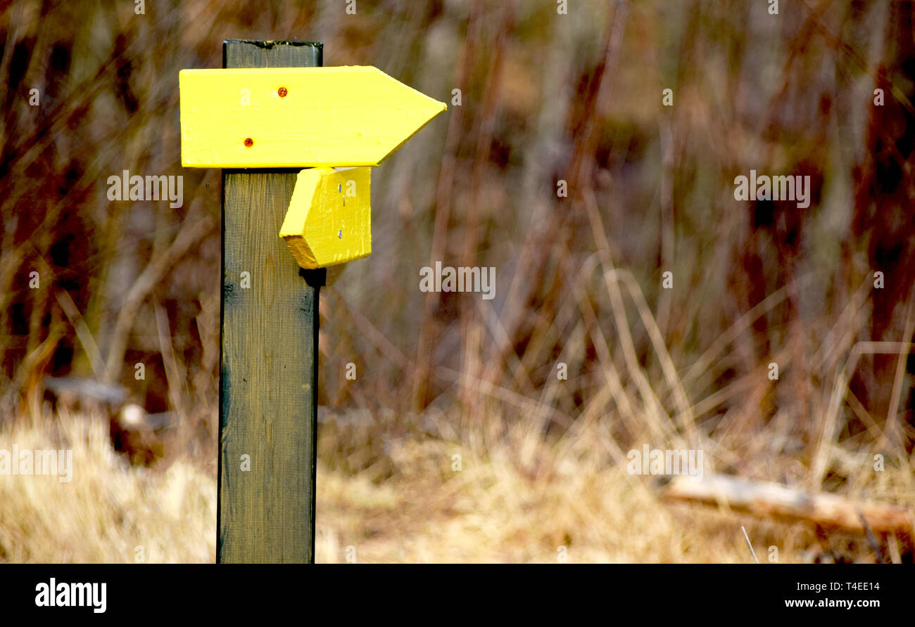 Yellow arrows pointing out the direction and the way forward - Stock Image