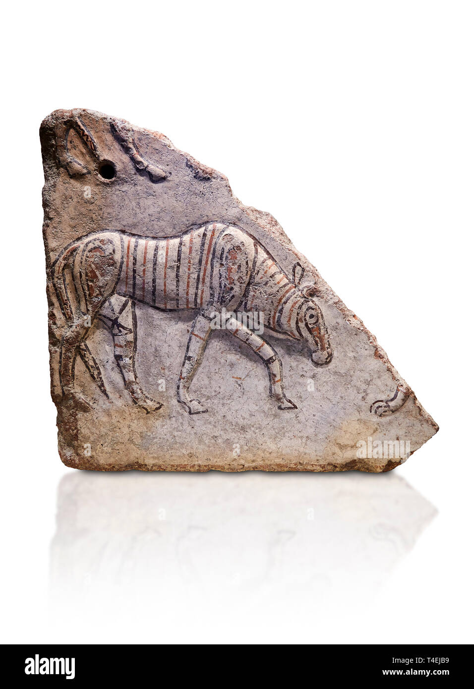 Phrygian relief fragment depicting a walking animal. 8th-7th century BC . Çorum Archaeological Museum, Corum, Turkey - Stock Image