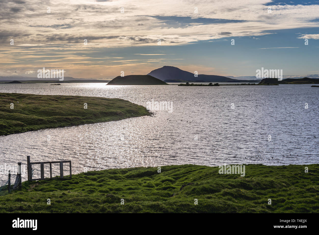 Road 848 along Lake Myvatn near Reykjahlid village in Iceland - Stock Image
