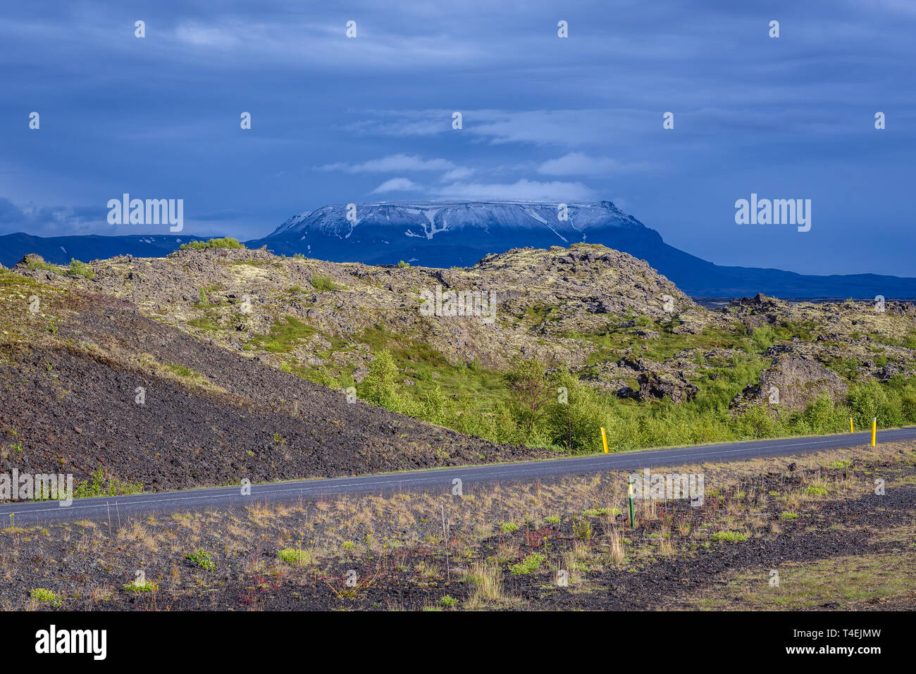Road 848 along Lake Myvatn near Reykjahlid village in Iceland, Blafjall mountain on background - Stock Image