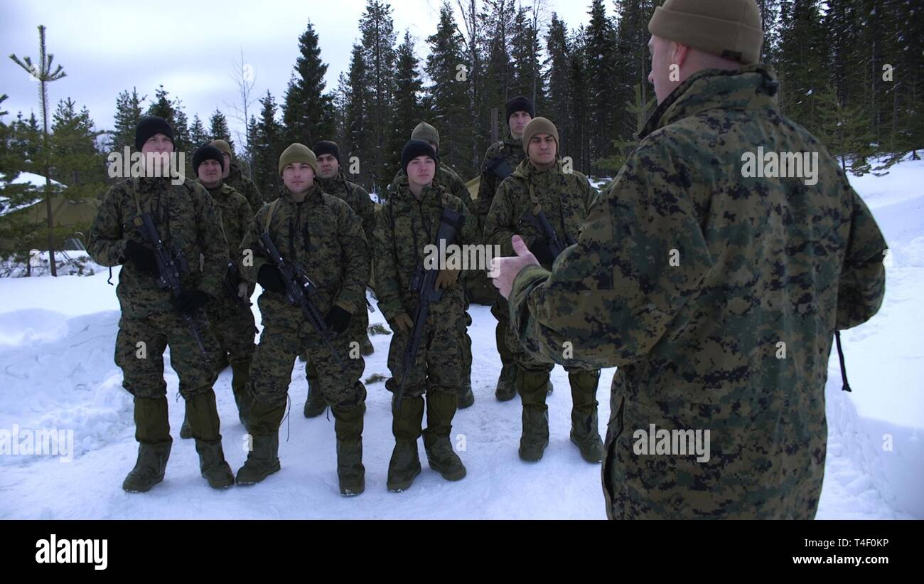 U.S. Marine Corps Lt. Col. Scott D. Welborn, the commanding officer of 2nd Air Naval Gunfire Liaison Company (ANGLICO), II Marine Expeditionary Force Information Group, congratulates his Marines for earning the Artic Service ribbon in Haparanda, Sweden, March 19, 2019. During exercise Northern Wind, Marines with 2nd ANGLICO were awarded for their time training in the Arctic Circle during Cold Weather Operations Training. Stock Photo