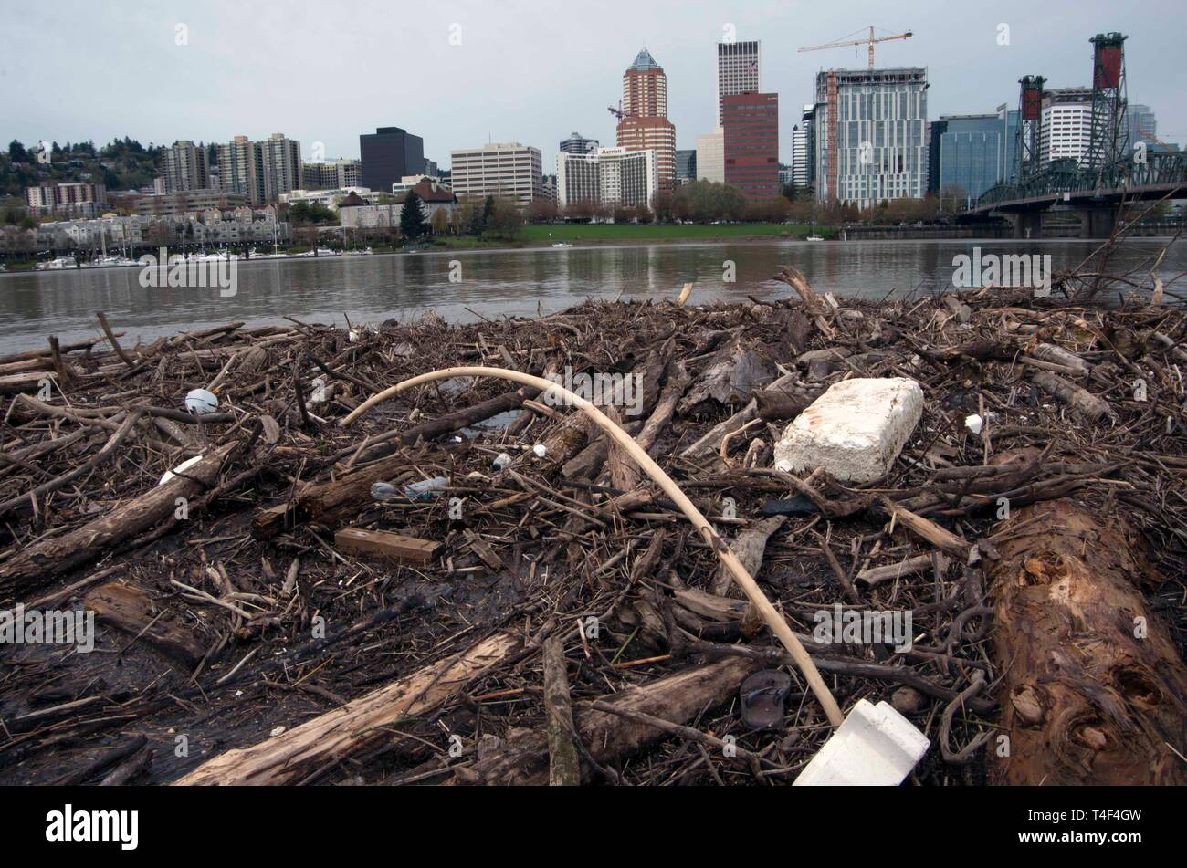 The Willamette River flows through the center of Portland, OR. It can be contaminated with trash, such as plastic bottles. - Stock Image