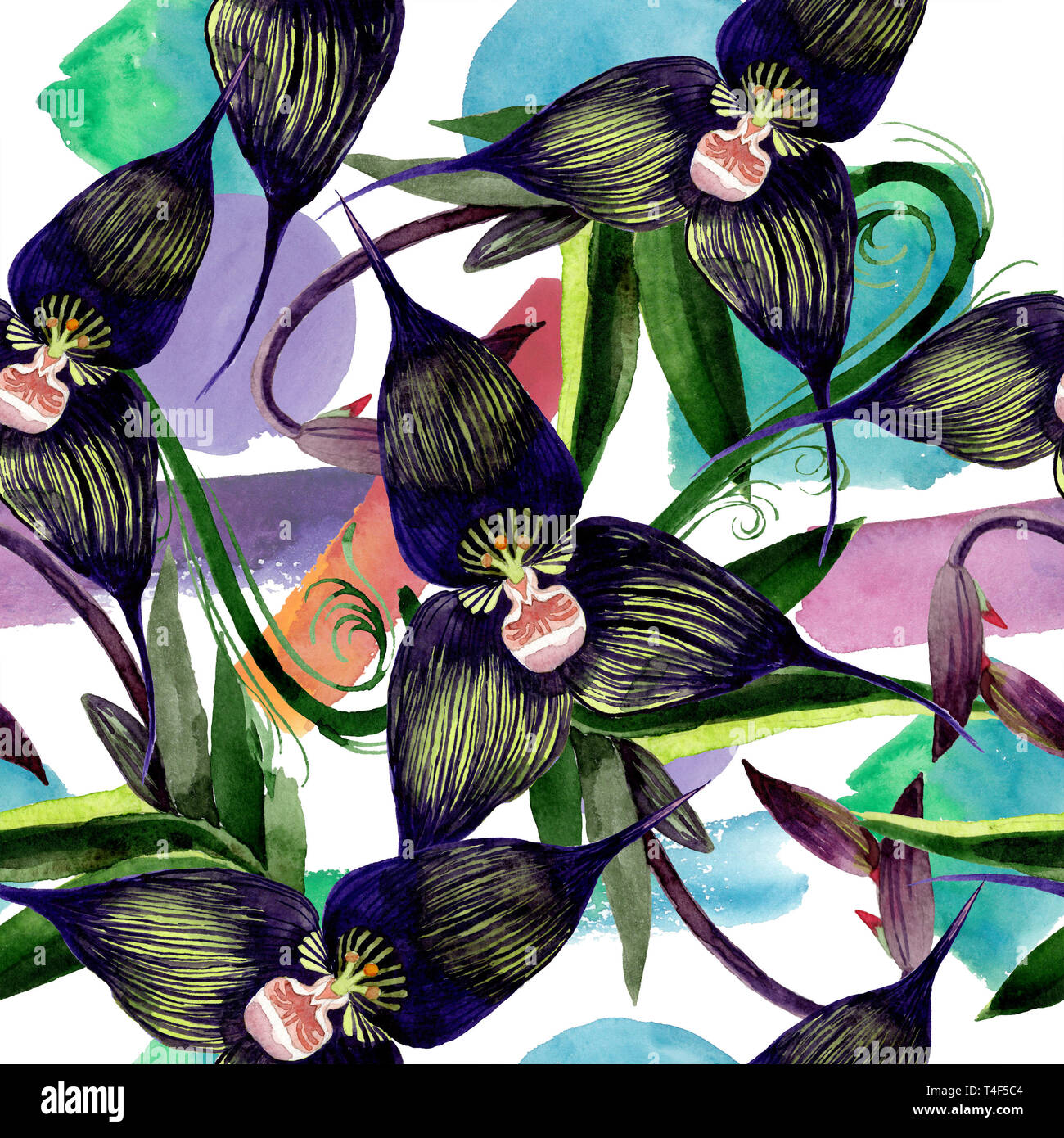 Black Orchid Floral Botanical Flowers Watercolor Background