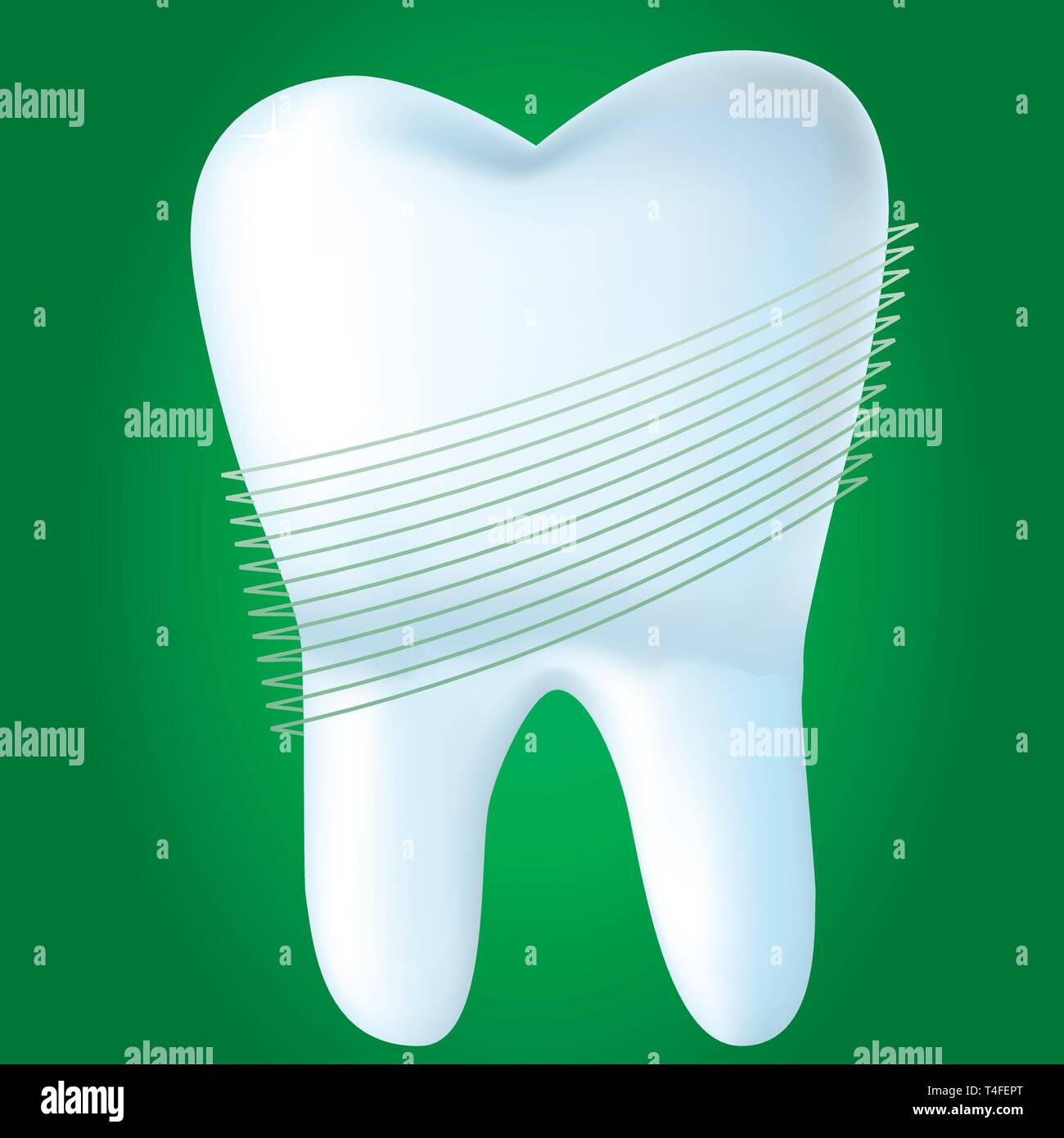 Tooth on green background, vector illustration made with mesh - Stock Image