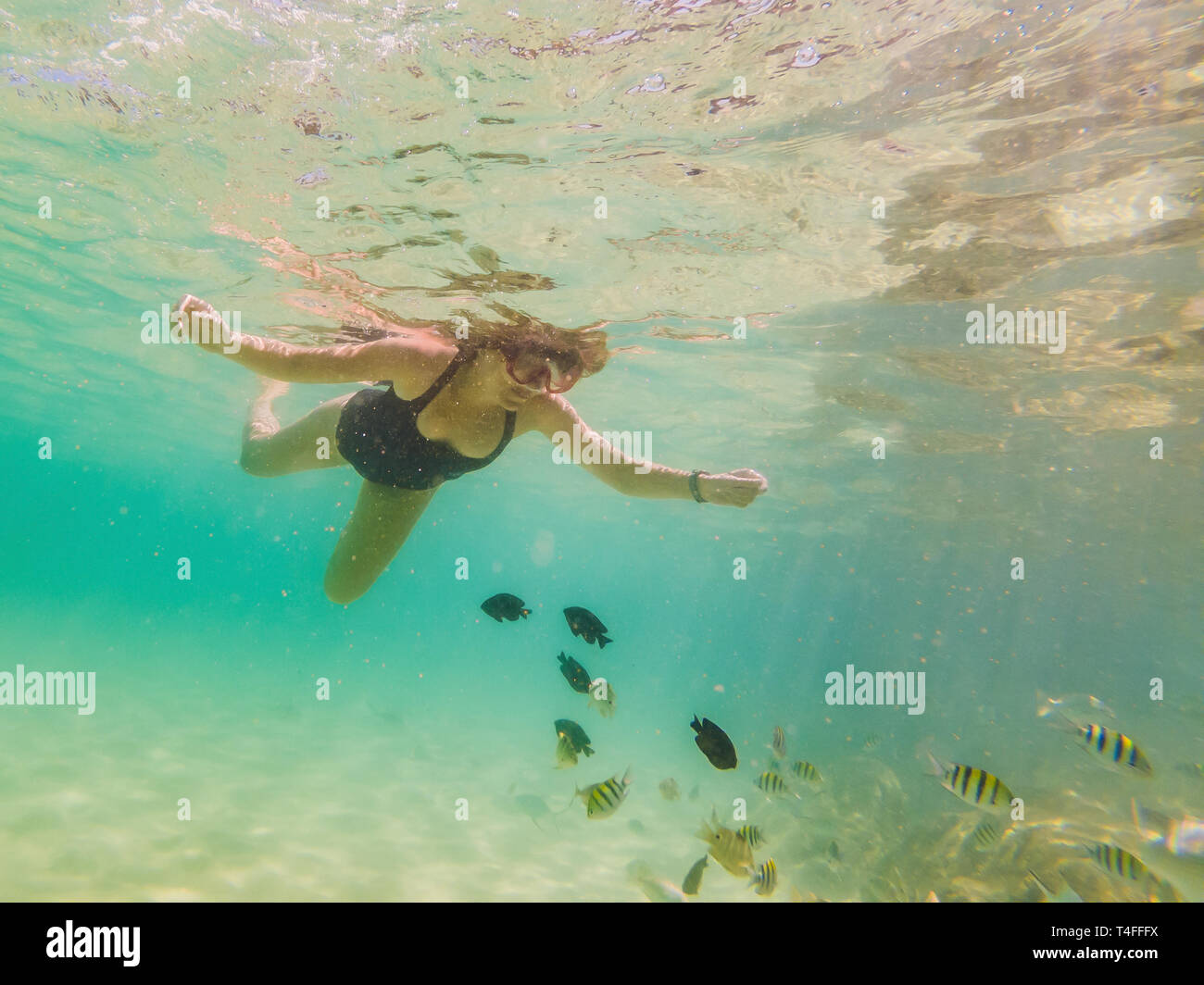 d2087fbeffe9 Happy young woman swimming underwater in the tropical ocean - Stock Image