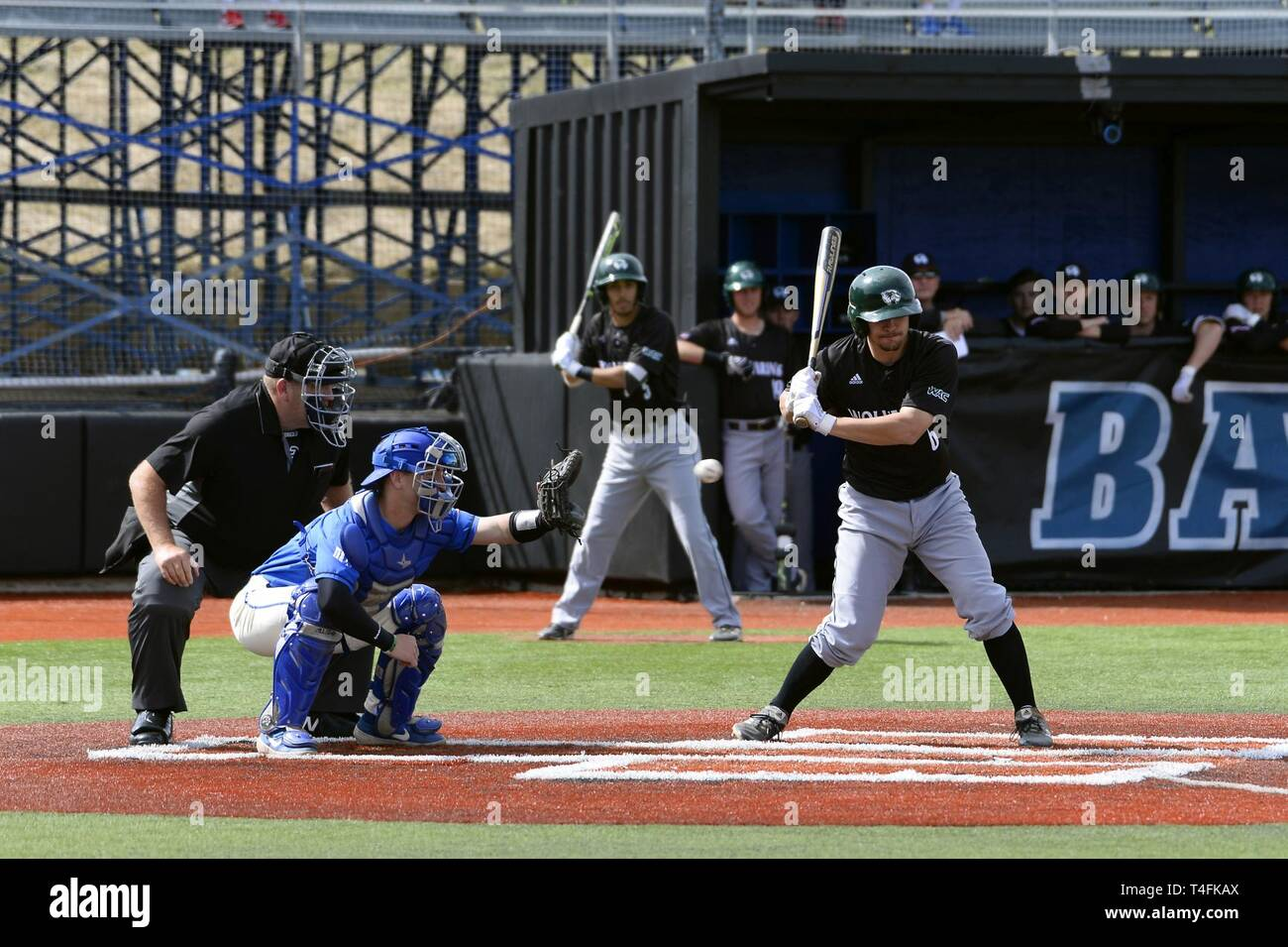U S Air Force Academy The Falcons Catcher Braydon Altorfer 18 Catches A Perfect Pitch During A Game Against Utah Valley University The Falcons Defeated The Wolverines 16 15 With A Walk Off