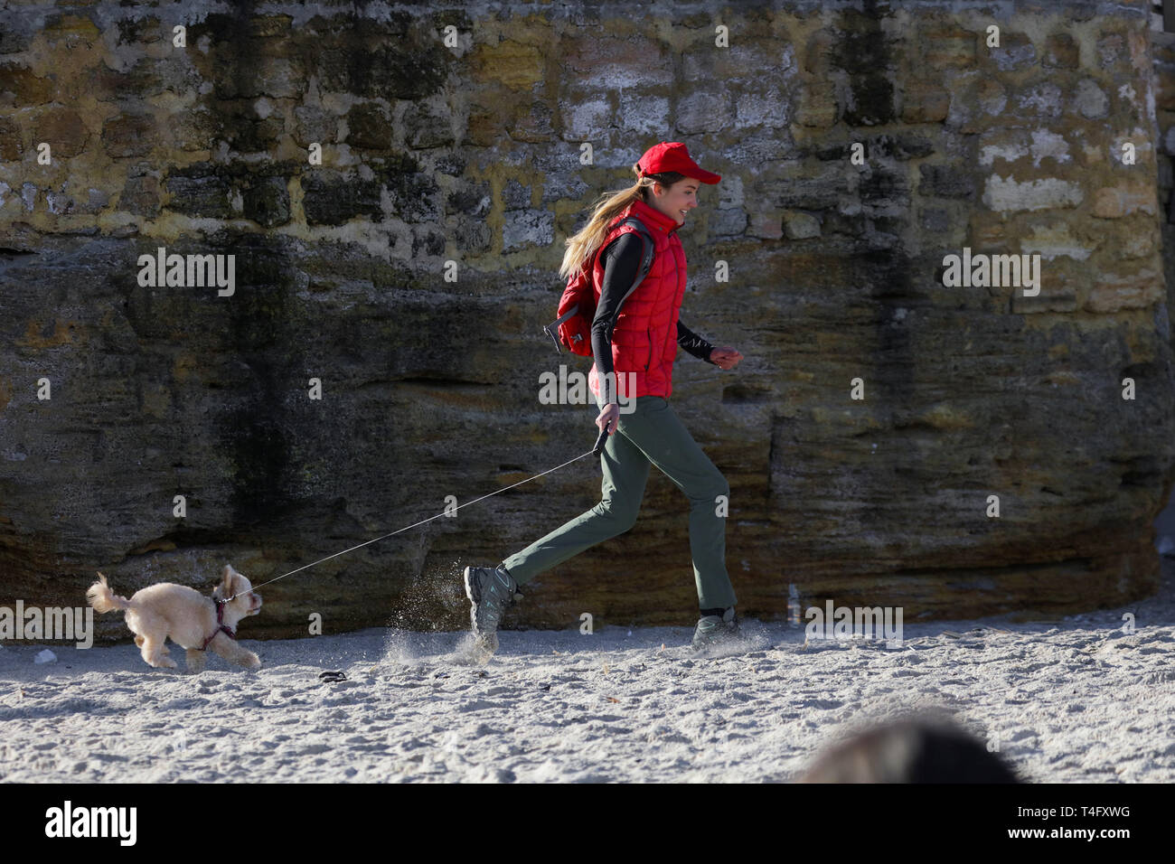 Happy couple of an owner girl and her lovely fluffy friend. Running and having fun outdoor on the winter beach. Active dog likes to run and jump. Red Stock Photo