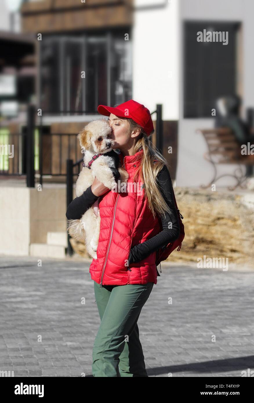 Cheerful and happy young woman holding her cute puppy on her hands and kissing him in a face. Small fluffy dog walking on a sunny day outdoor. Girl Stock Photo