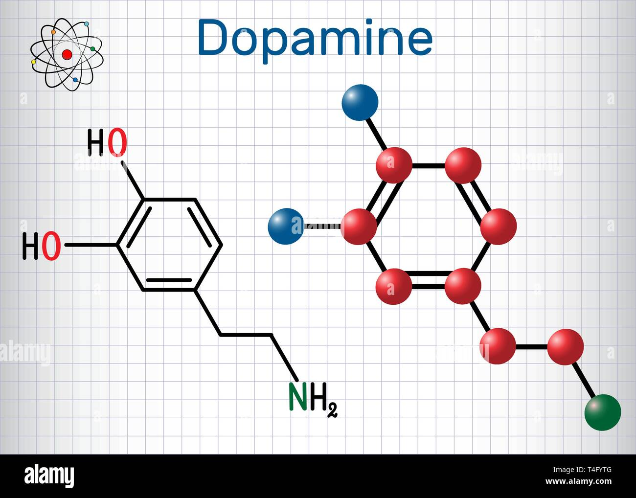 Dopamine ( DA) molecule. Structural chemical formula and molecule model. Sheet of paper in a cage. Vector illustration - Stock Image