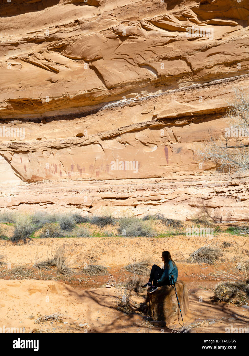 Image of ancient pictographs created by Native Americans; Horseshoe Canyon, Canyonlands National Park, Emery County, Utah, USA. - Stock Image