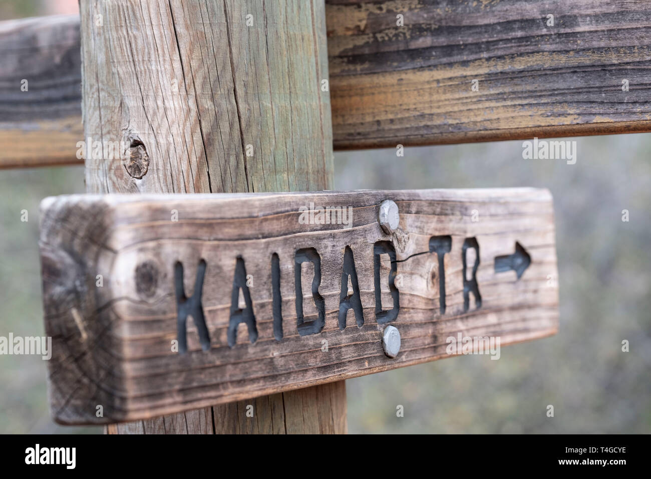 Trail sign, Sedona Arizona, USA - Stock Image