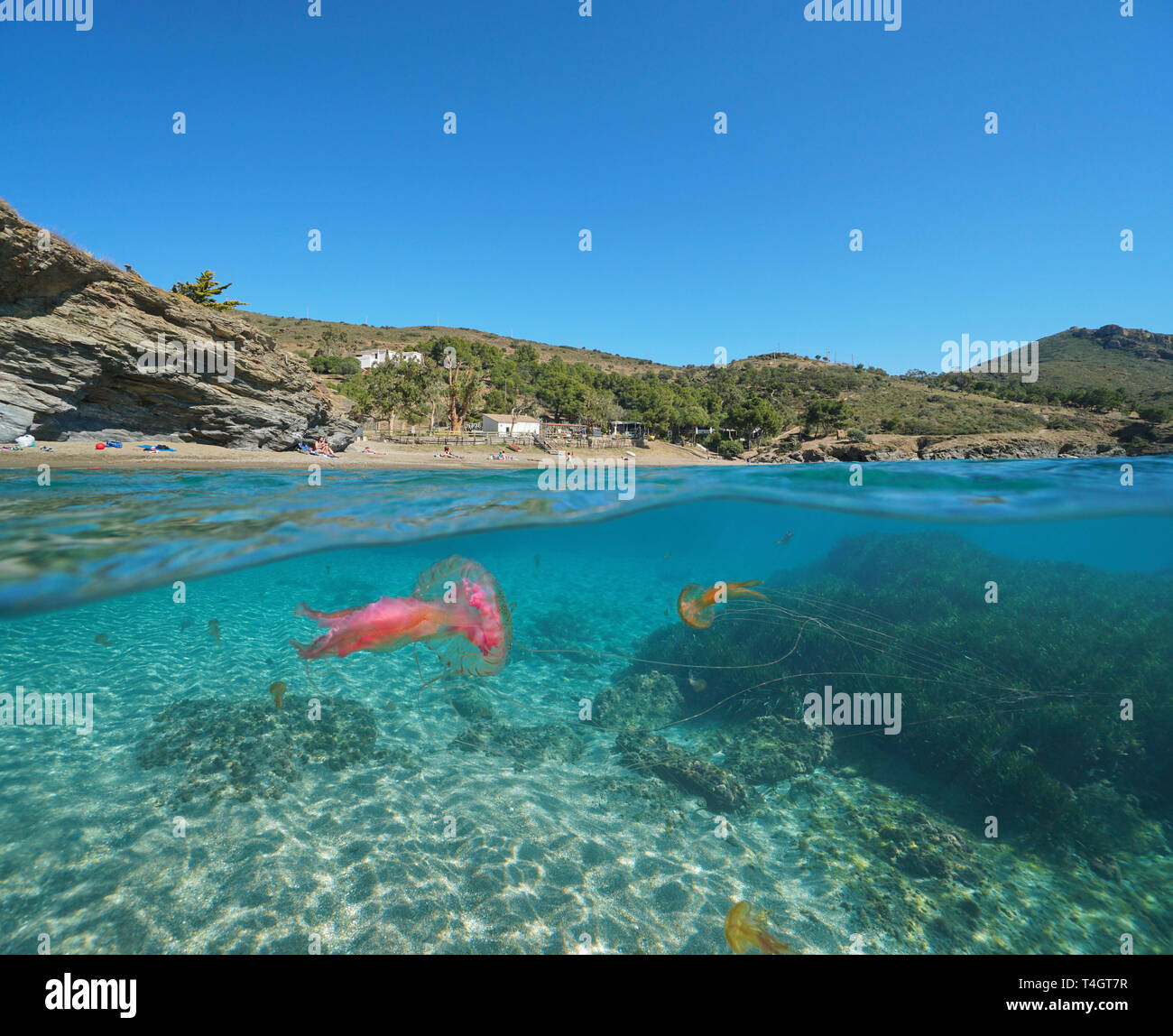 Spain Mediterranean coast with jellyfish underwater, Roses, Costa Brava, Catalonia, split view half over and under water Stock Photo