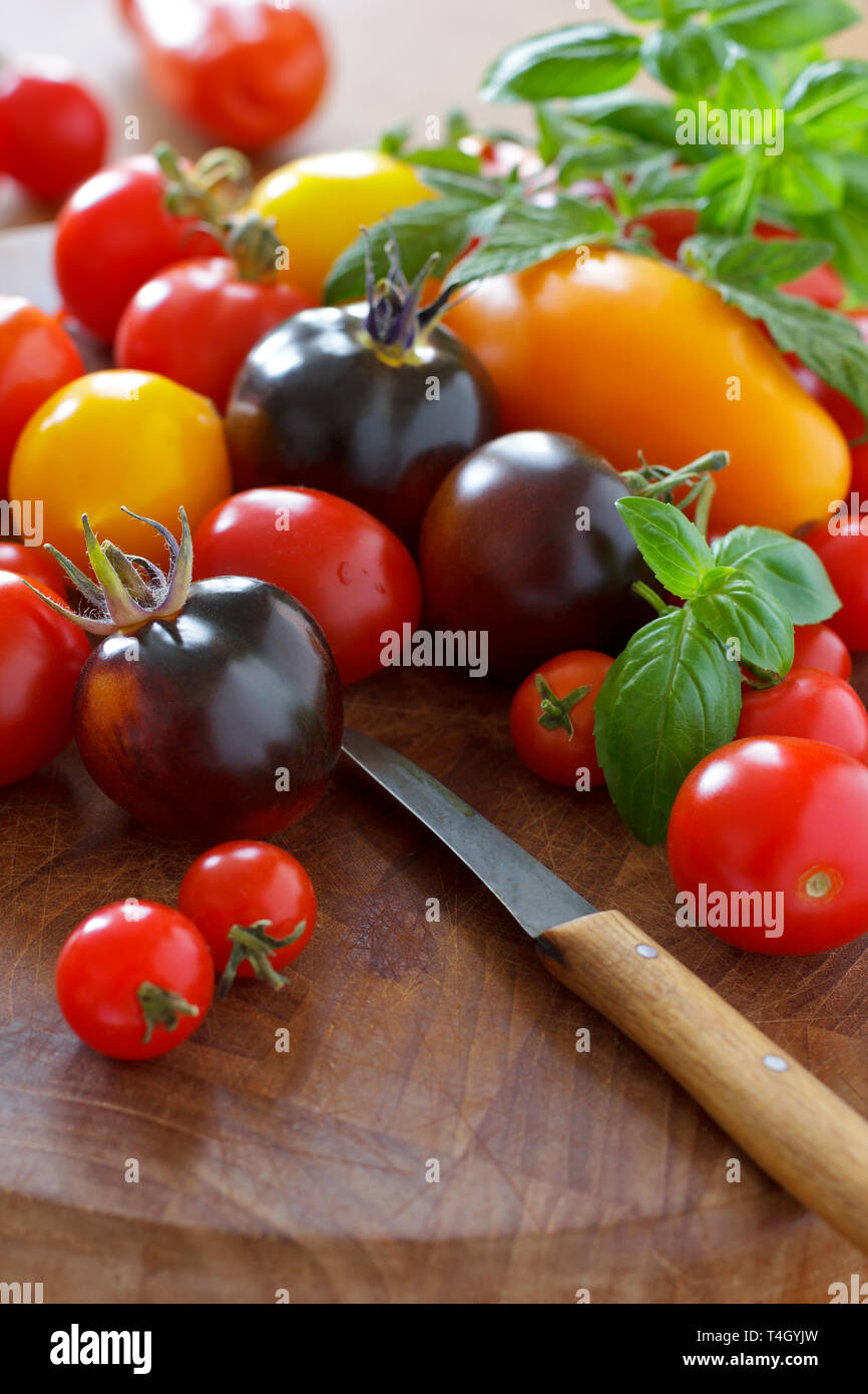 A colorful selection of old tomato varieties with kitchen knife, food diversity concept Stock Photo