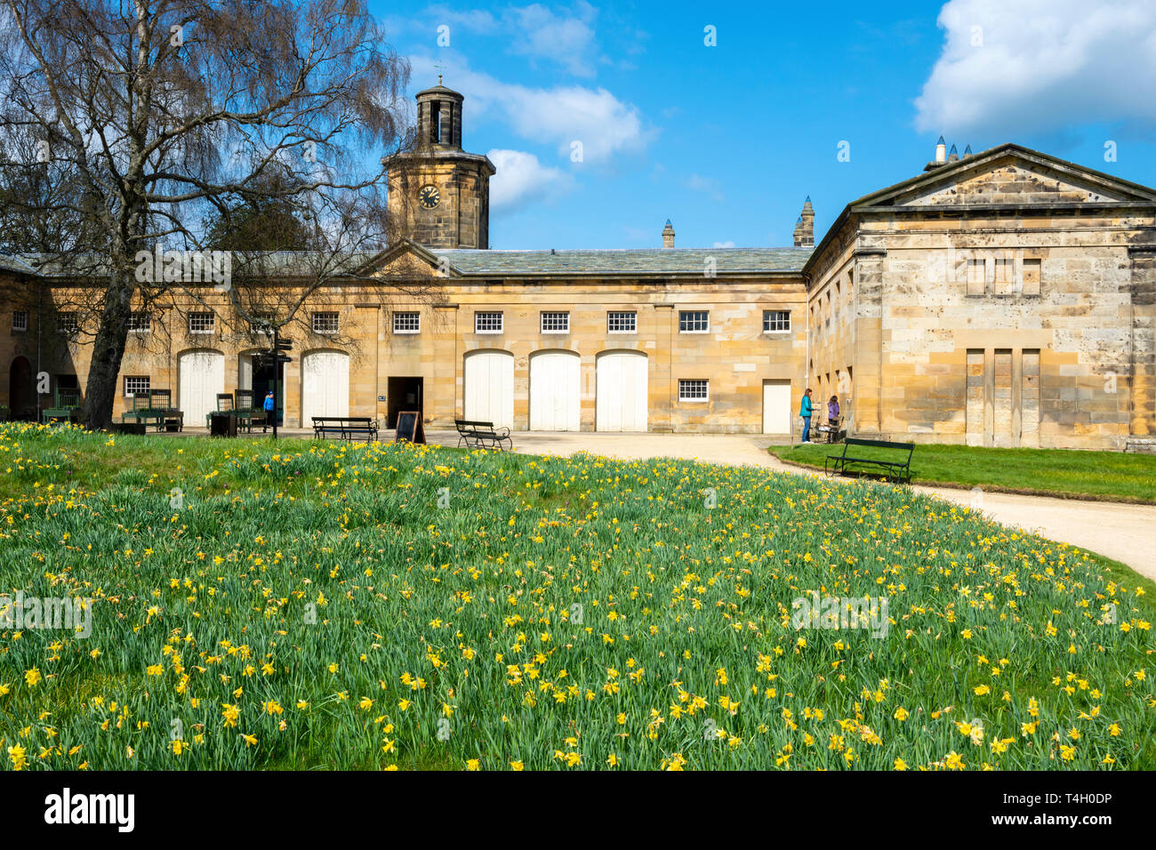 Stable block and clock tower at Belsay Hall, an early 19th Century mansion house, in Northumberland, England, UK Stock Photo