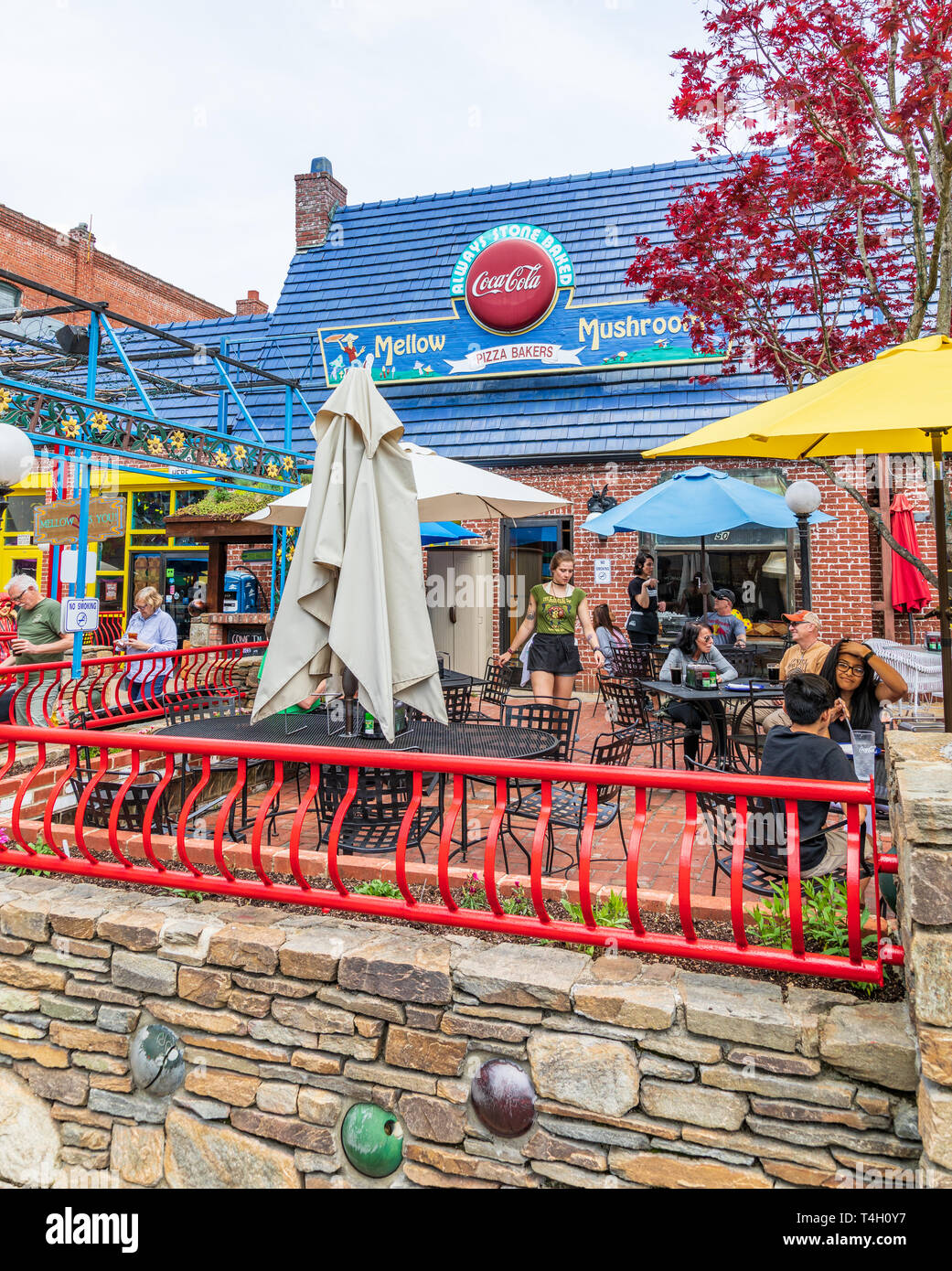 ASHEVILLE, NC, USA-4/11/19:  The Mellow Mushroom restaurant, on Broadway Avenue, in downtown.  Vertical image. Stock Photo