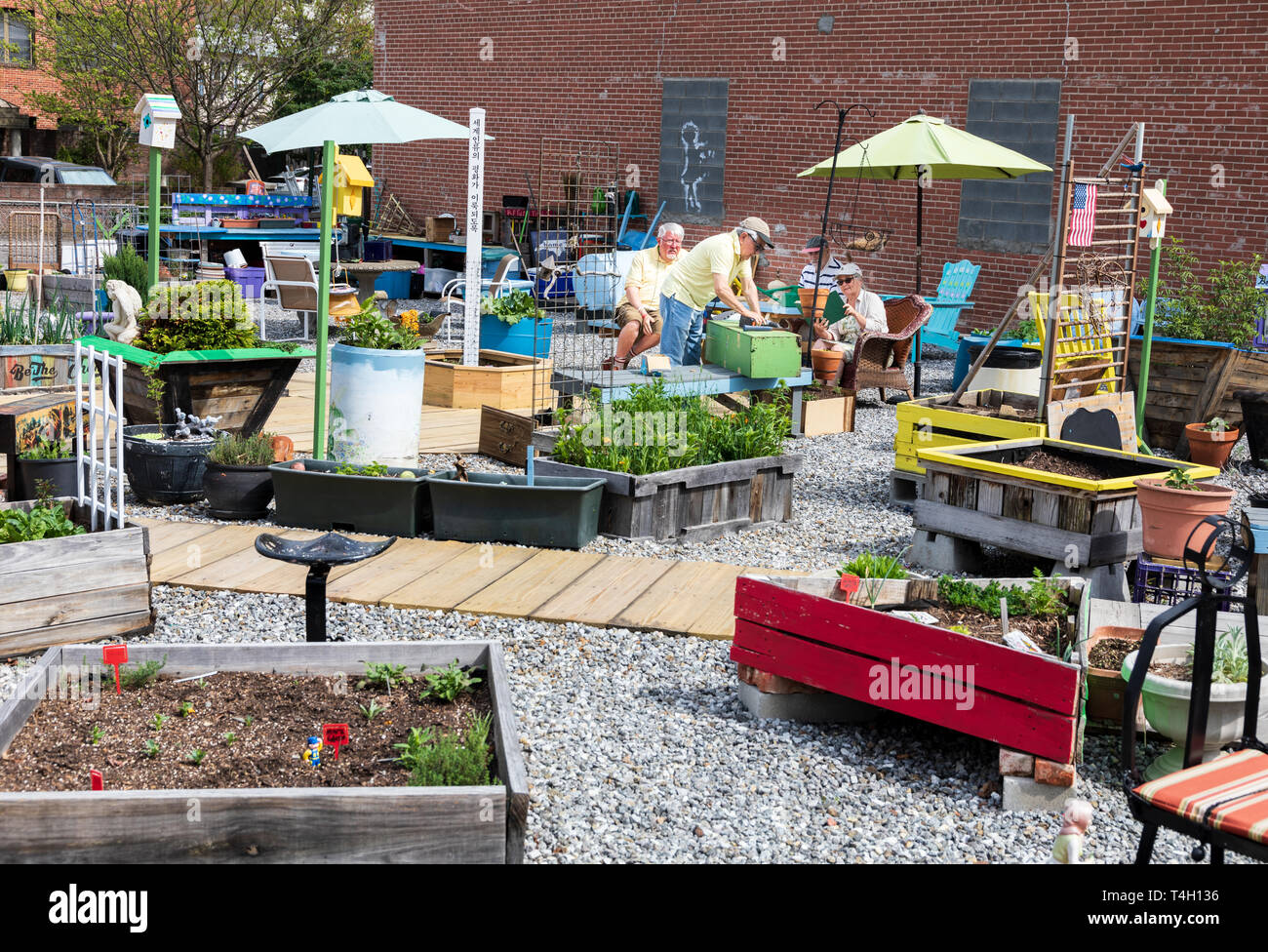 ASHEVILLE, NC, USA-4/11/19:  Four senior citizens plan and work on a community garden between Page Ave. and Haywood Street in downtown. Stock Photo