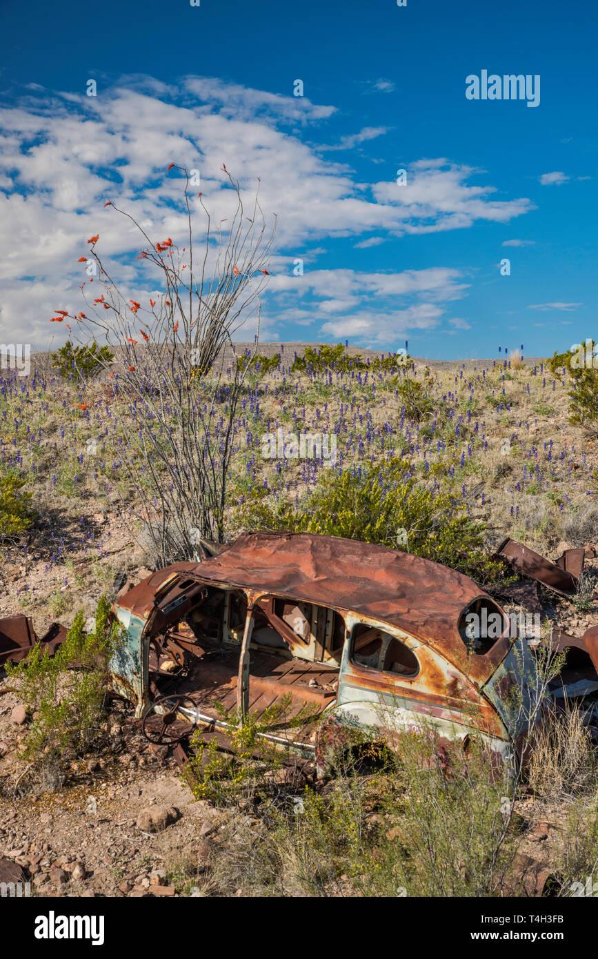 Car Wreck Stock Photos & Car Wreck Stock Images - Alamy