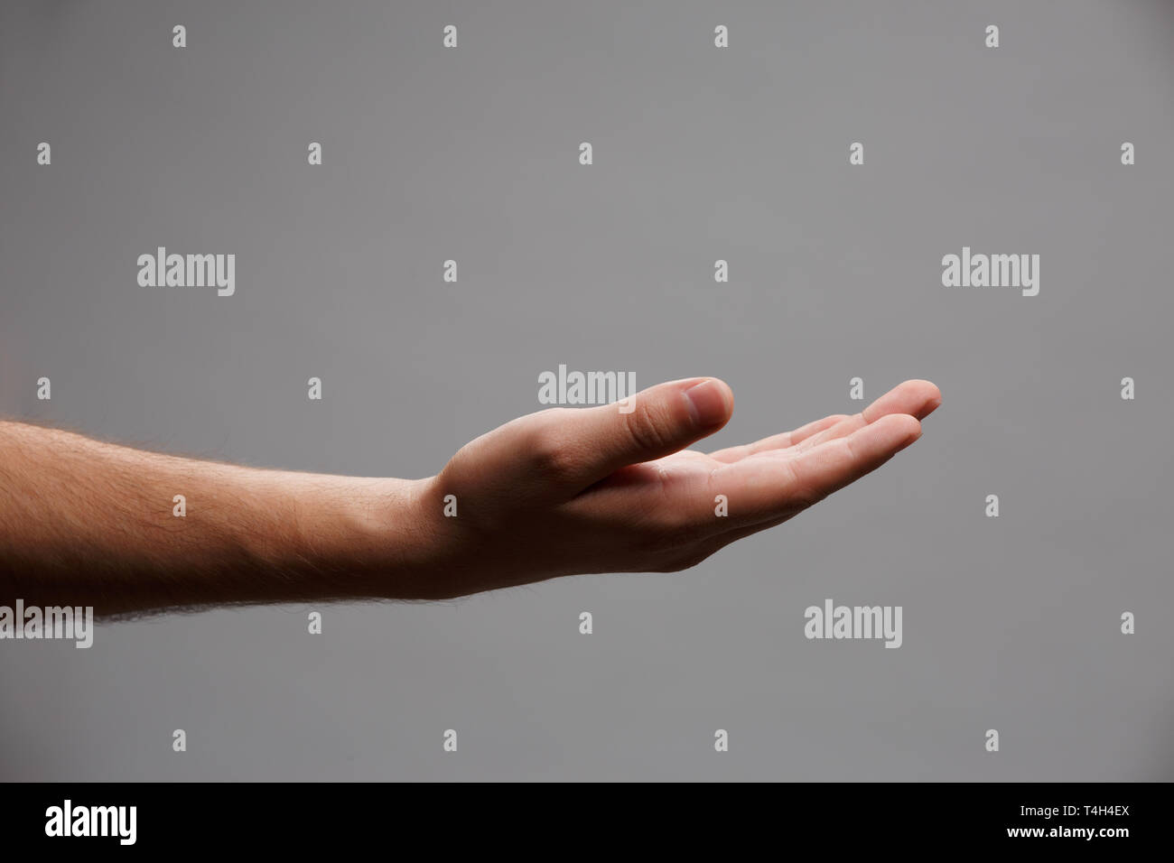 Image of outstretched hand palm up on empty gray background. Stock Photo