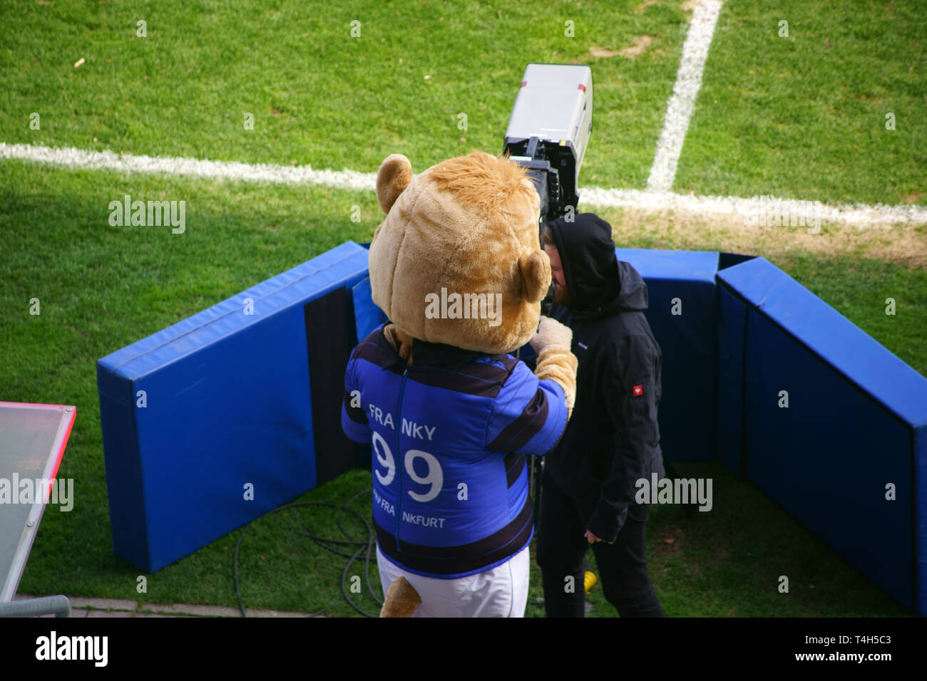 Frankfurt, Germany - March 24, 2019: The mascot Franky of the football club FSV Frankfurt makes in a game of the Regional League Southwest filming on  - Stock Image