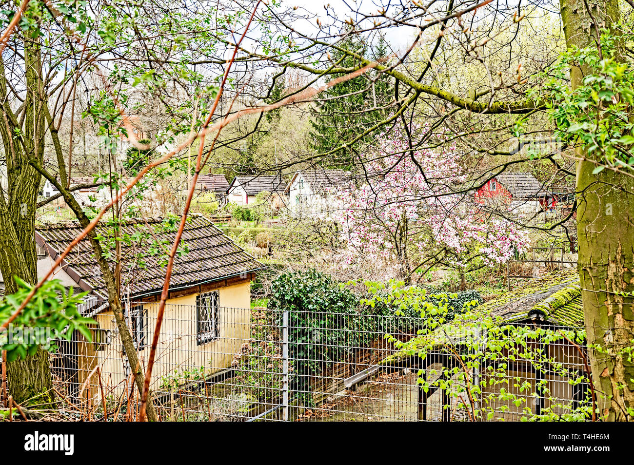 Allotment garden in Bochum (Germany); Schrebergarten in Bochum - Stock Image