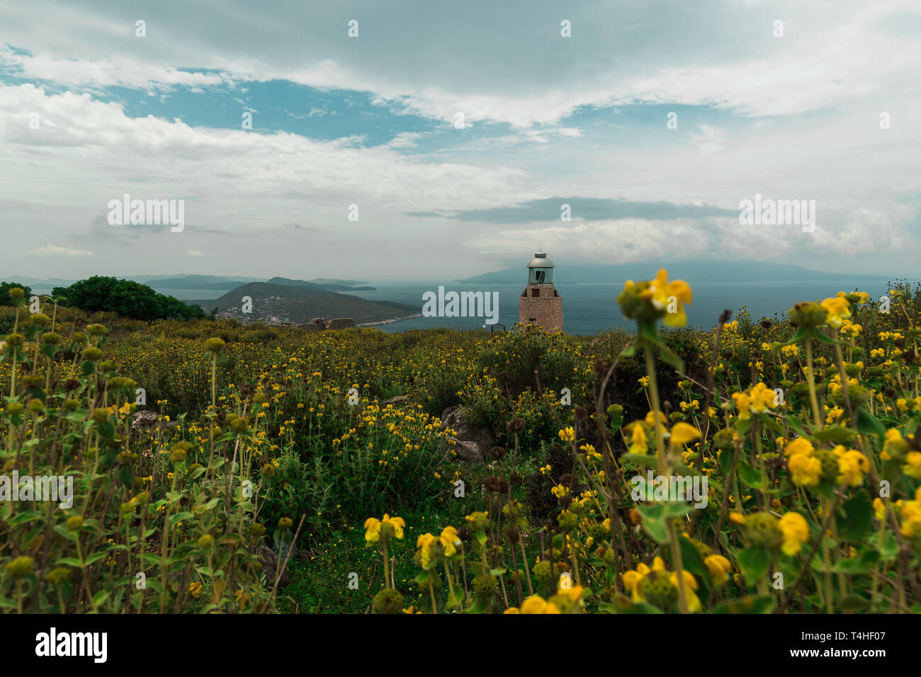 Picturesque little lighthouse on the Albanian coast surrounded by blossoming yellow flowers with view onto Corfu (Saranda, Albania, Europe) - Stock Image