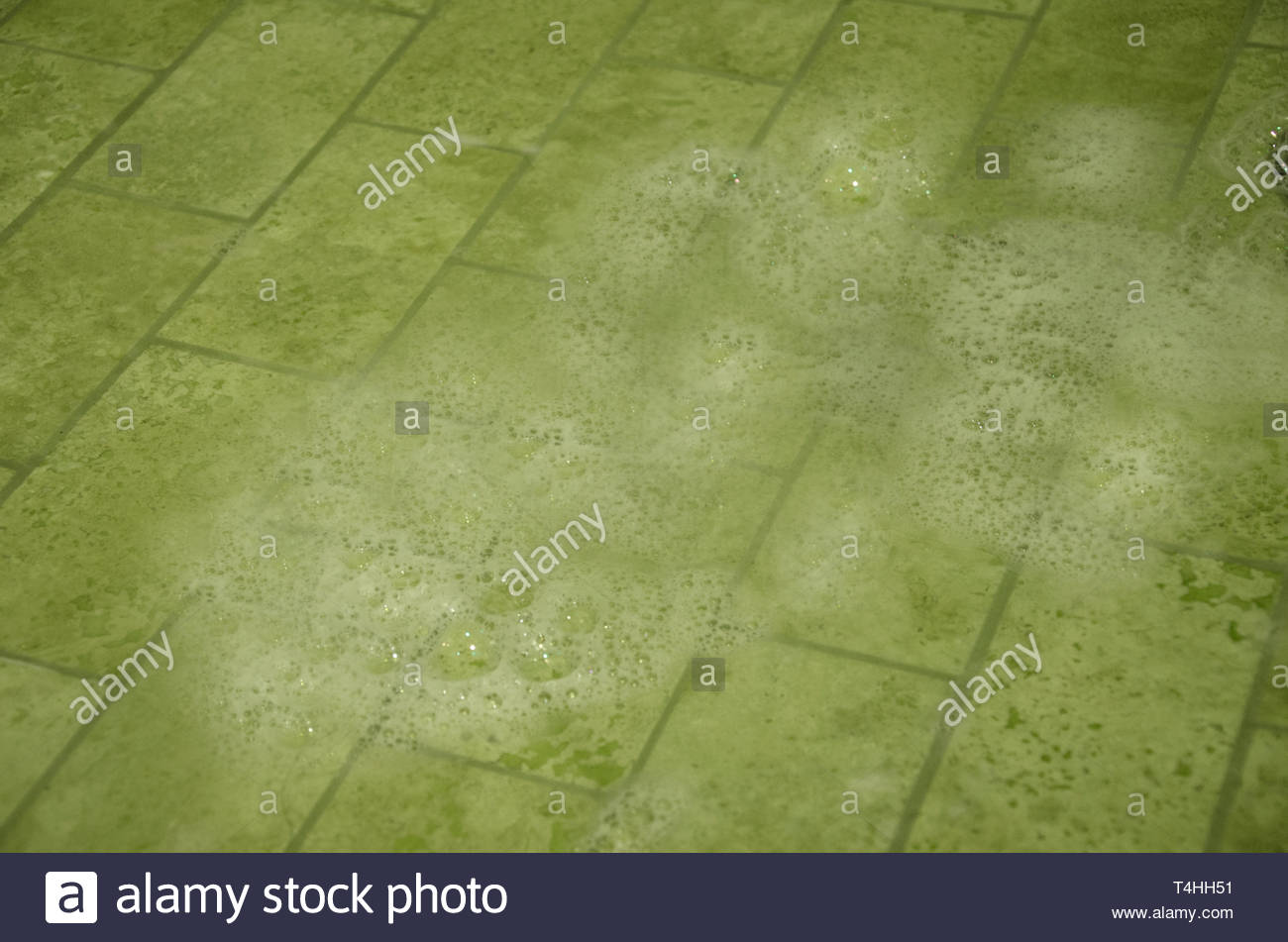 Soap Suds on Tile - Stock Image