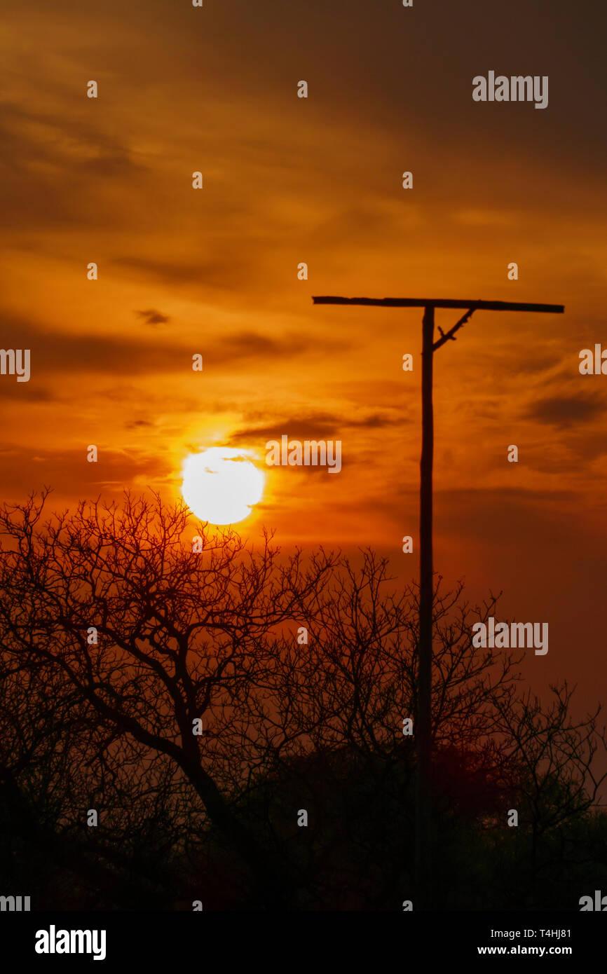 Ansitzstange für Greifvögel im Sonnenuntergang mit Silhouette von Bäumen Stock Photo