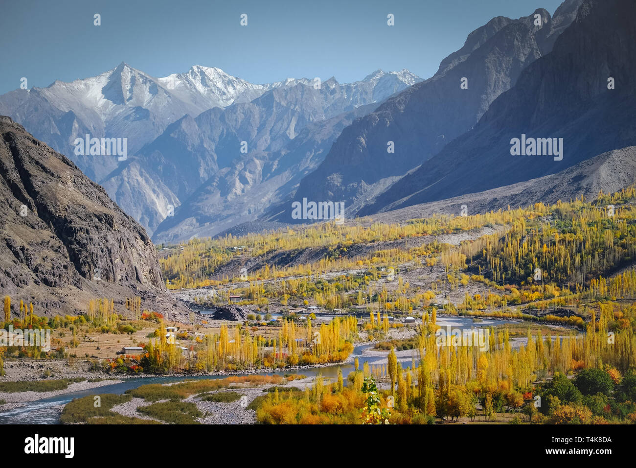 Landscape view of river flowing through forest in Gupis with mountain range in the background. Ghizer in autumn. Gilgit Baltistan, Pakistan. - Stock Image