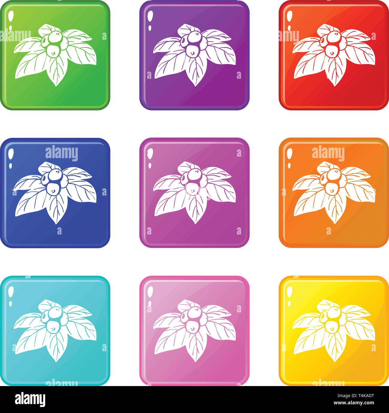 Whortleberries icons set 9 color collection - Stock Vector