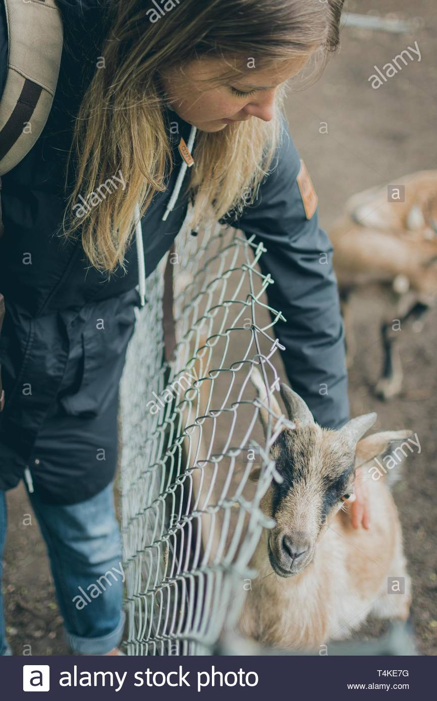 woman holding goat - Stock Image