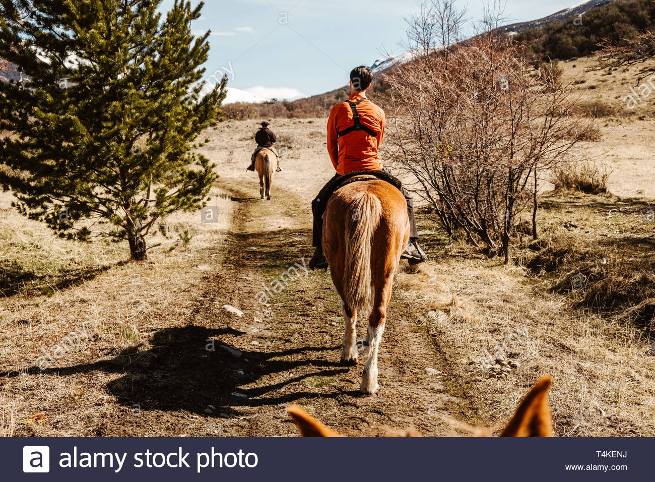 person raid on horse - Stock Image
