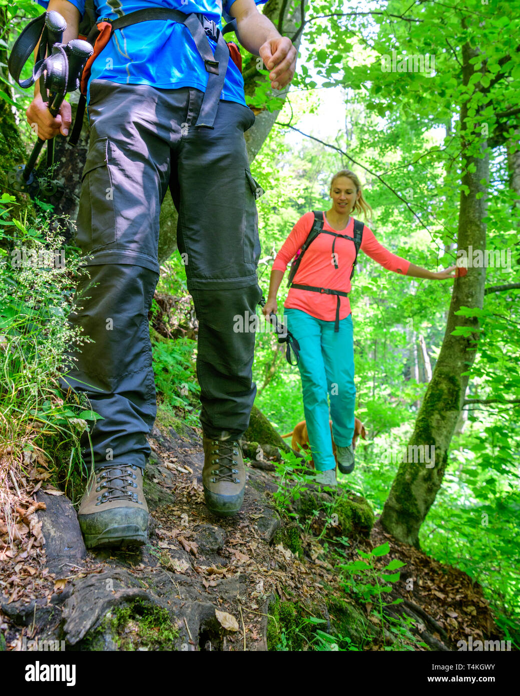 Hiking on an exciting and challenging trail in forest - Stock Image