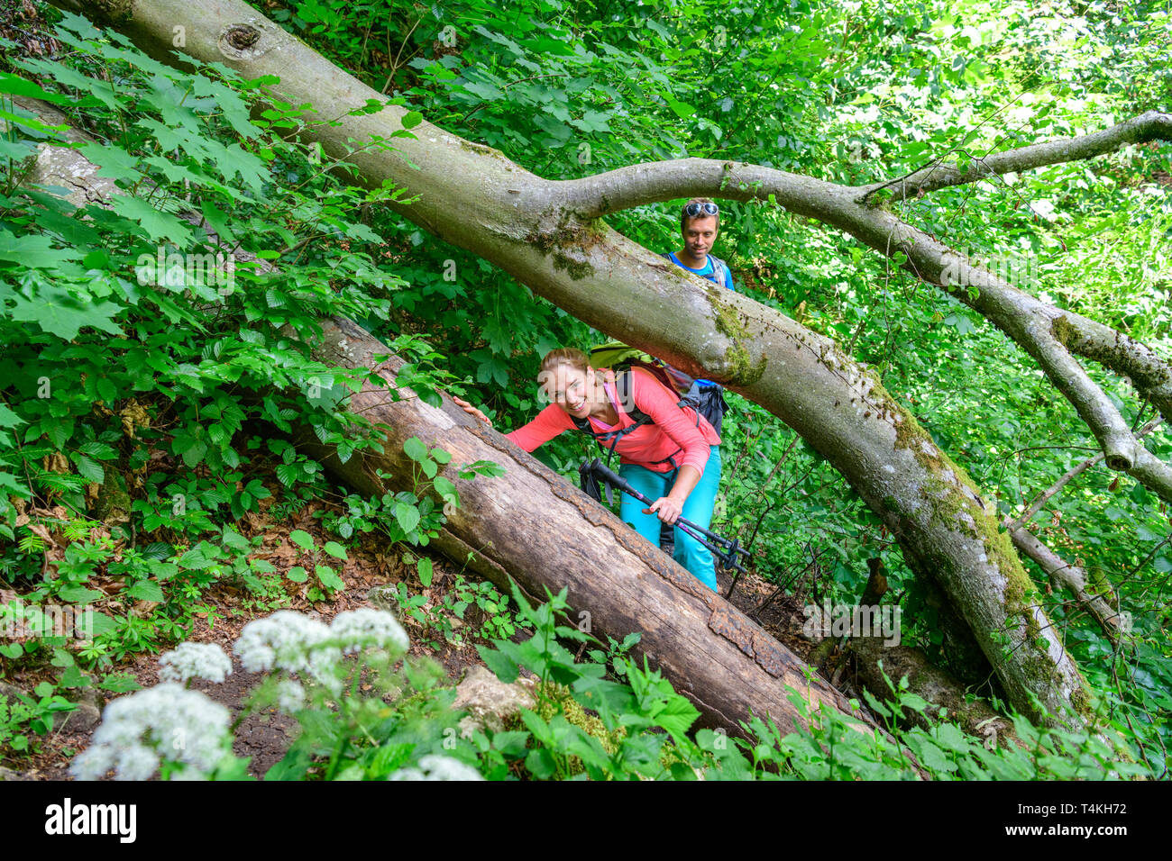 Adventural tour on challenging trail in forest - Stock Image