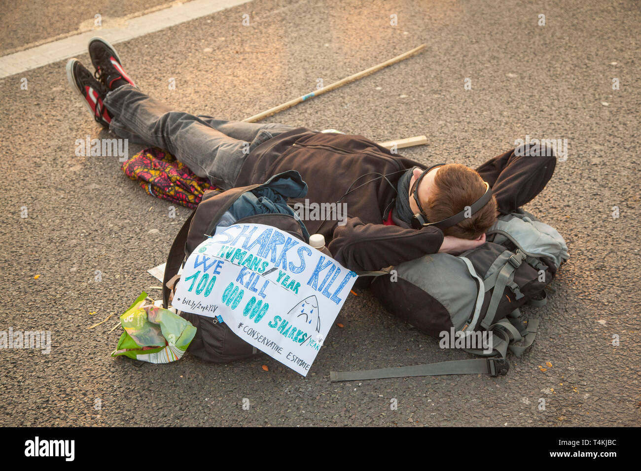 A protester lies on the road on Waterloo Bridge for the Extinction Rebellion demonstration with a placard - Stock Image