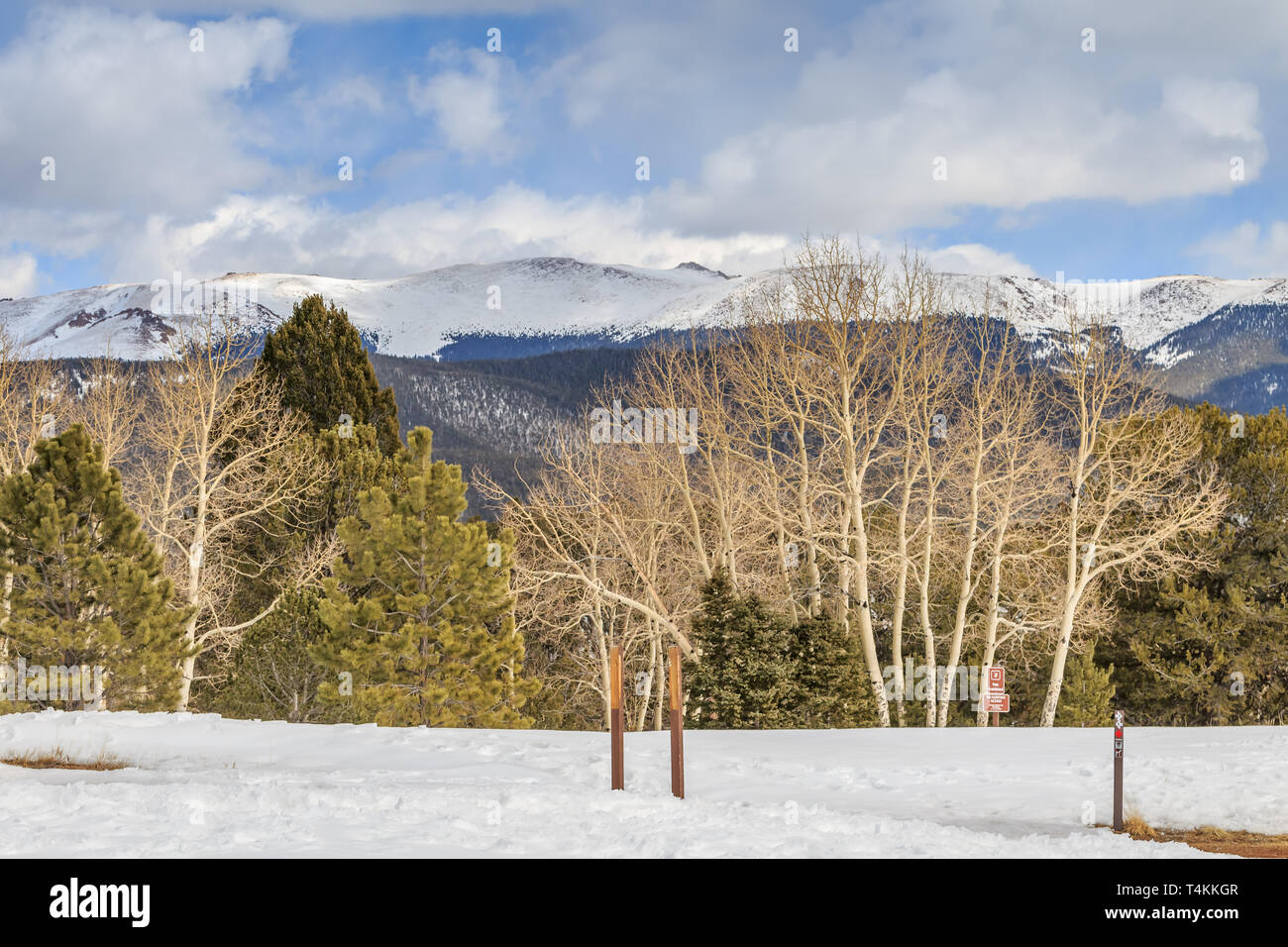 Mueller State Park (Colorado) on a snowy winter morning - Stock Image