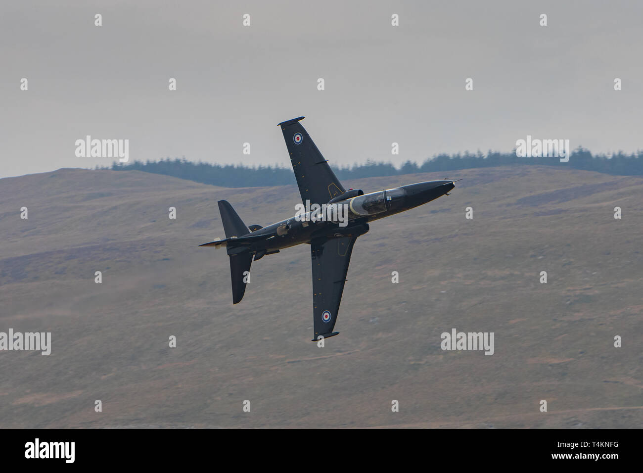 An RAF Hawk makes a training light through Mach Loop, Wales, UK. Stock Photo