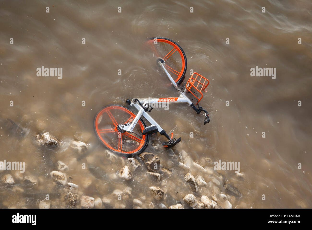 River water laps over a discarded Mobike hire bike on the shoreline thrown into the River Thames by vandals near Westminster Bridge Stock Photo